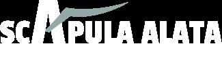 The Scapula Alata Company  - treatment for Scapula Alata
